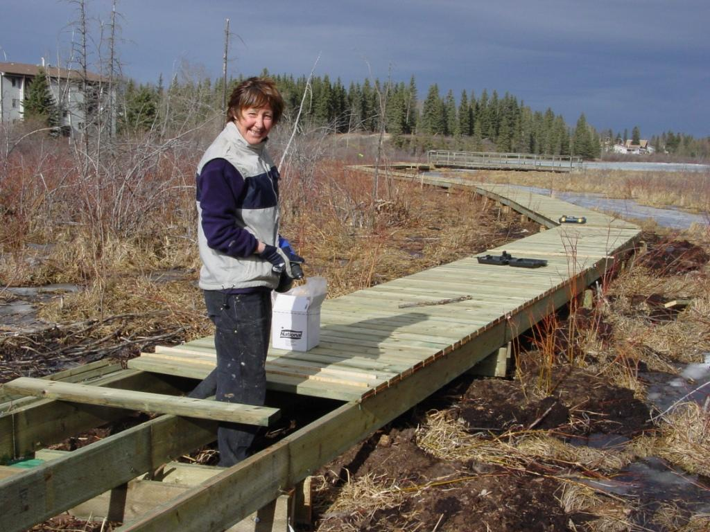 building the boardwalk